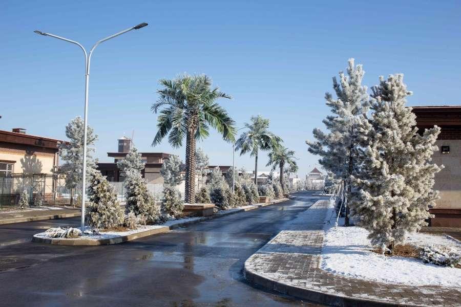 Новогодние каникулы в Алматы